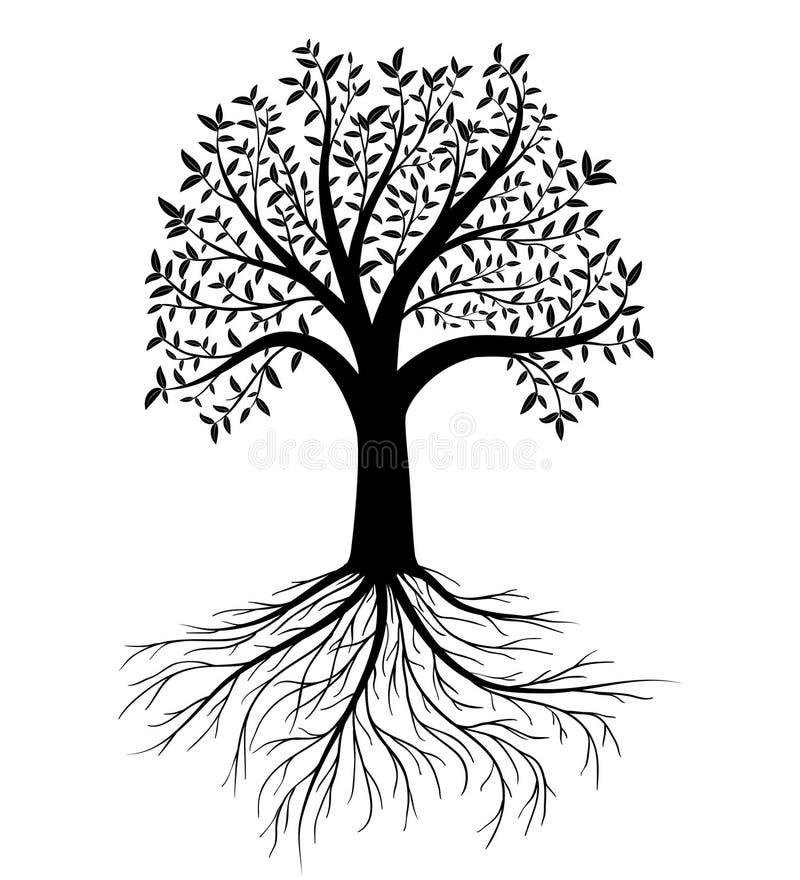 Черное дерево с листьями и корнями Иллюстрация штока ...