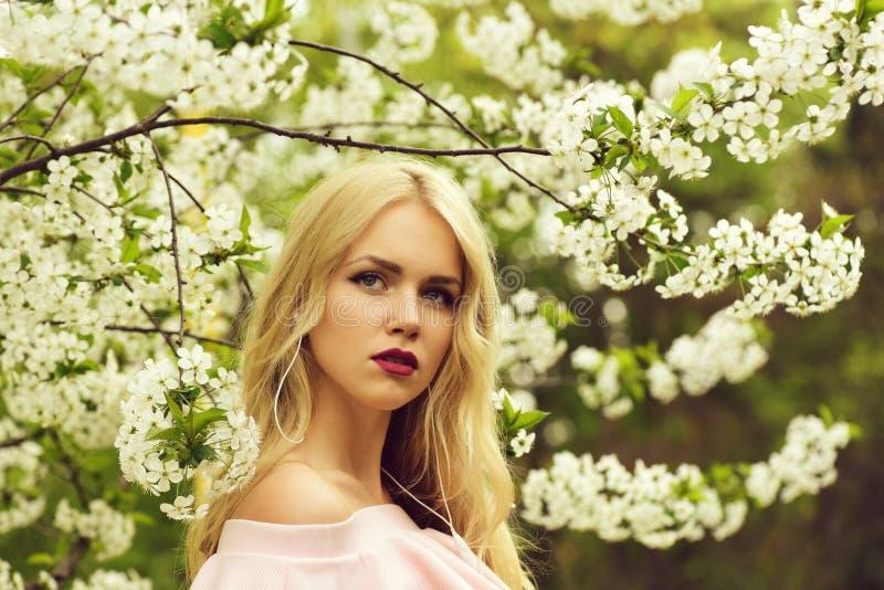 Дерево весны цвести, вишня с белыми цветками и милая женщина стоковое фото rf