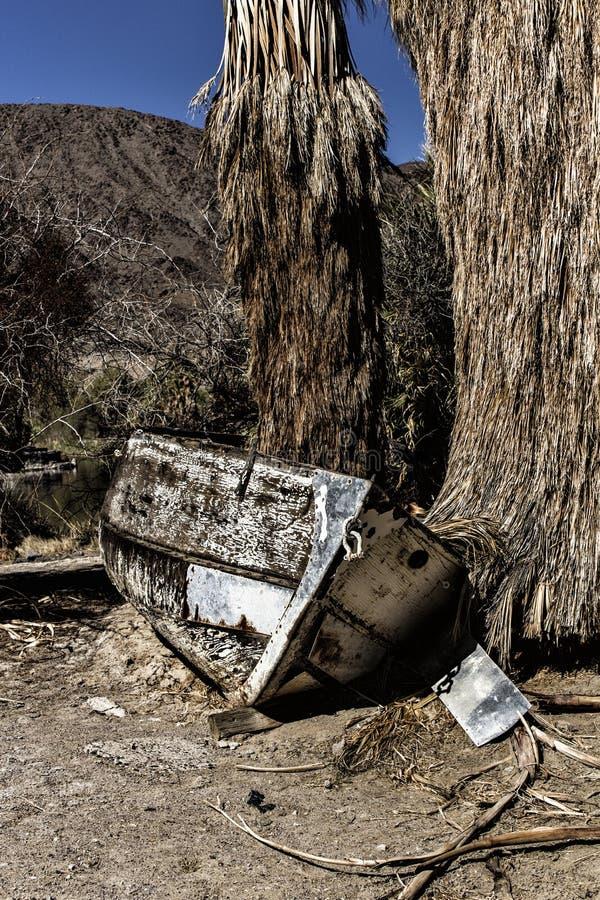 Дерево в моей шлюпке стоковая фотография rf