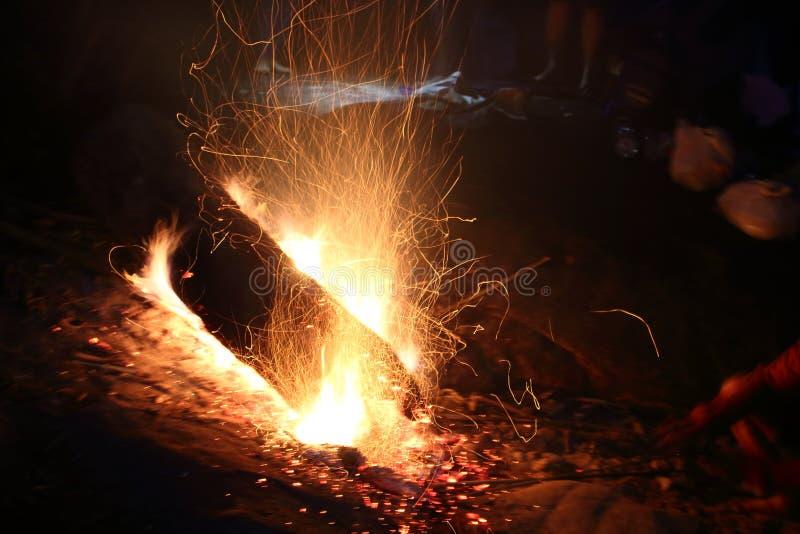 Дерево горит на остатках стоковое фото rf