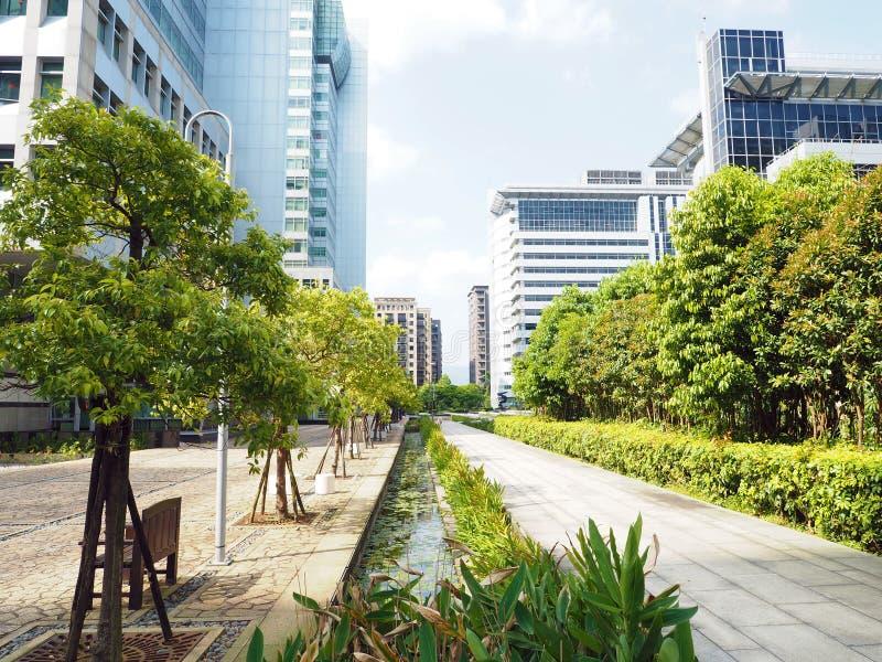 Дерево города стоковые фото
