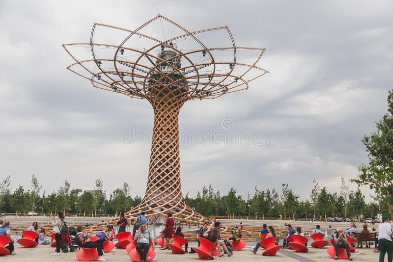 Дерево жизни на экспо 2105 в милане, Италии стоковое фото