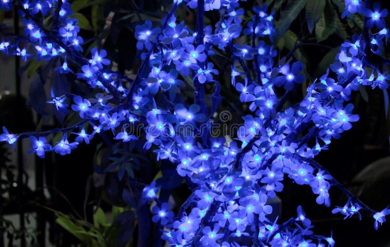 Дерево искусственный цвести Небольшие цветки, загоренные декоративными светами Орнаментальный завод стоковое изображение