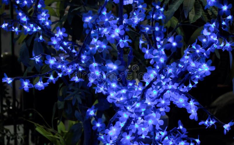 Дерево искусственный цвести Небольшие цветки, загоренные декоративными светами Орнаментальный завод стоковая фотография