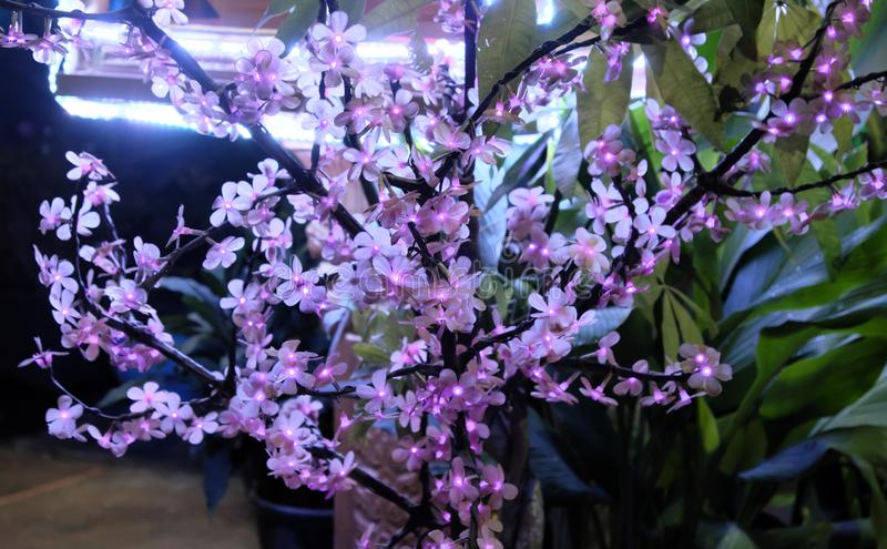 Дерево искусственный цвести Небольшие цветки, загоренные декоративными светами Орнаментальный завод стоковые фотографии rf