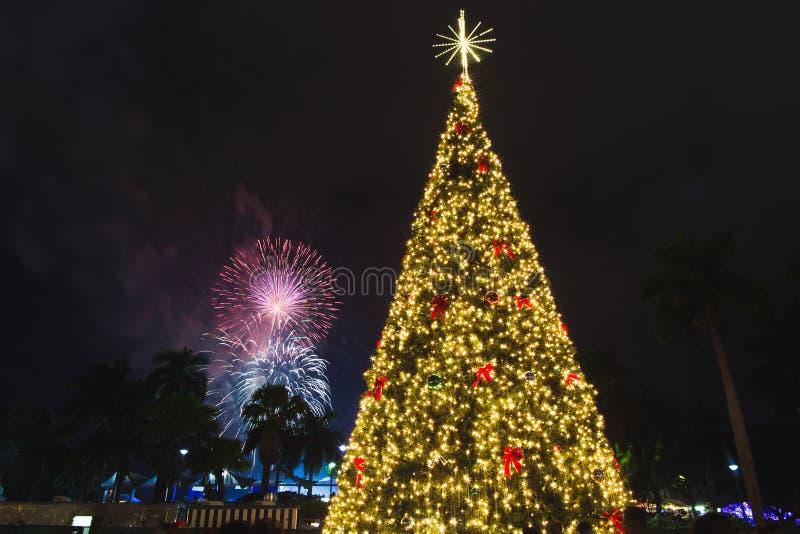 Дерево и фейерверк Нового Года стоковые фото