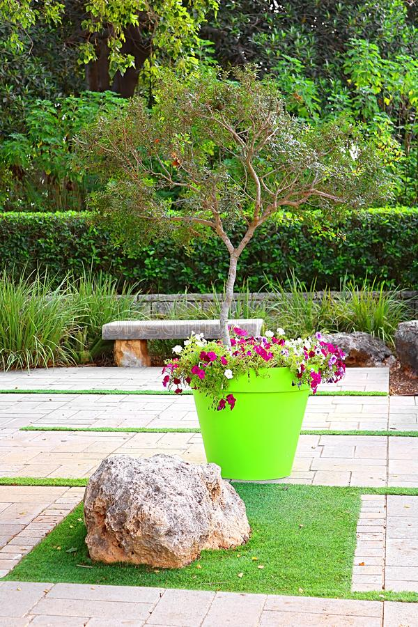 Дерево и цветки в большом баке в парке Ramat Hanadiv, мемориальных садах барона Edmond de Rothschild, Zichron Yaakov, Израиля стоковая фотография