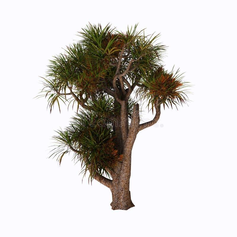 Дерево капусты бесплатная иллюстрация