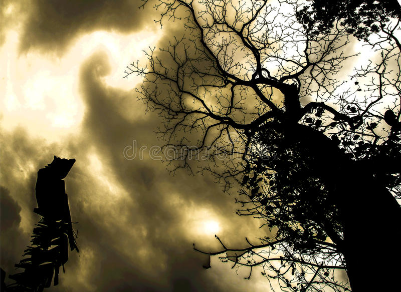 Дерево кошмара стоковое фото rf