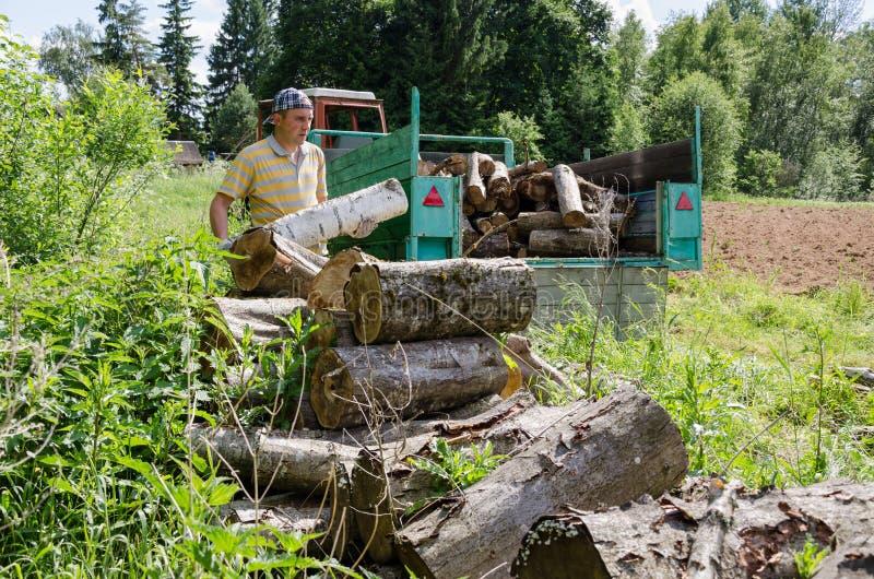 Дерево нагрузки человека Lumberjack вносит дальше прицеп для трактора в журнал стоковое фото rf