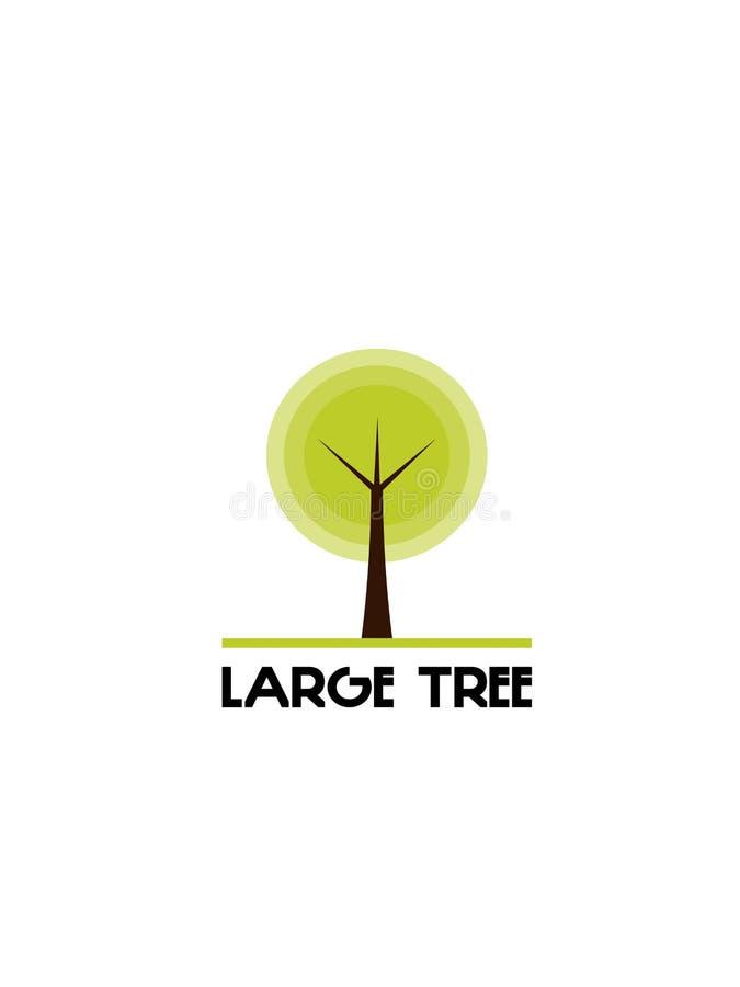 Дерево на белой предпосылке стоковые фото