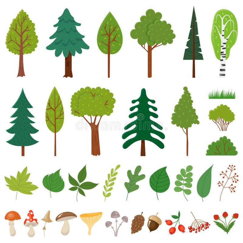 Лесные деревья Дерево полесья, дикие заводы ягод и гриб Набор вектора элементов лесов флористический иллюстрация штока