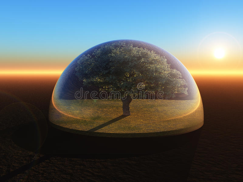 Дерево под стеклянным куполом иллюстрация штока