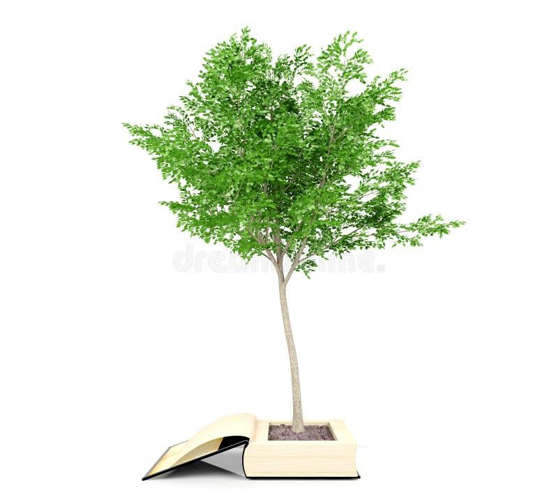 Дерево растя от старой книги Рост знания от концепции образования стоковое изображение