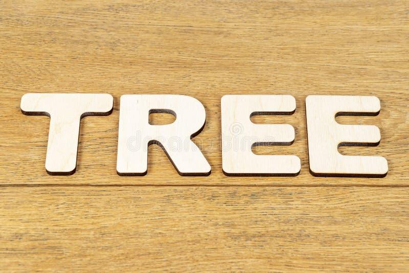 Дерево слова на деревянном столе стоковое фото rf