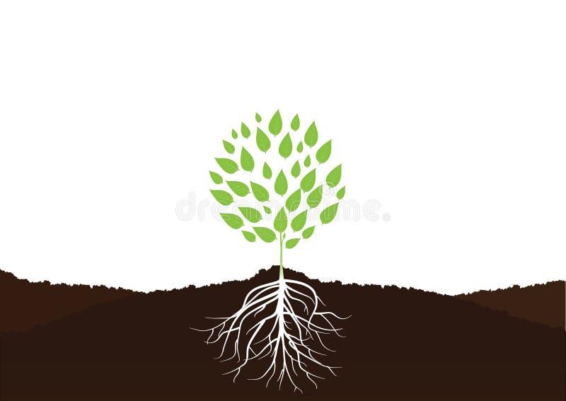 Дерево с вектором корней бесплатная иллюстрация
