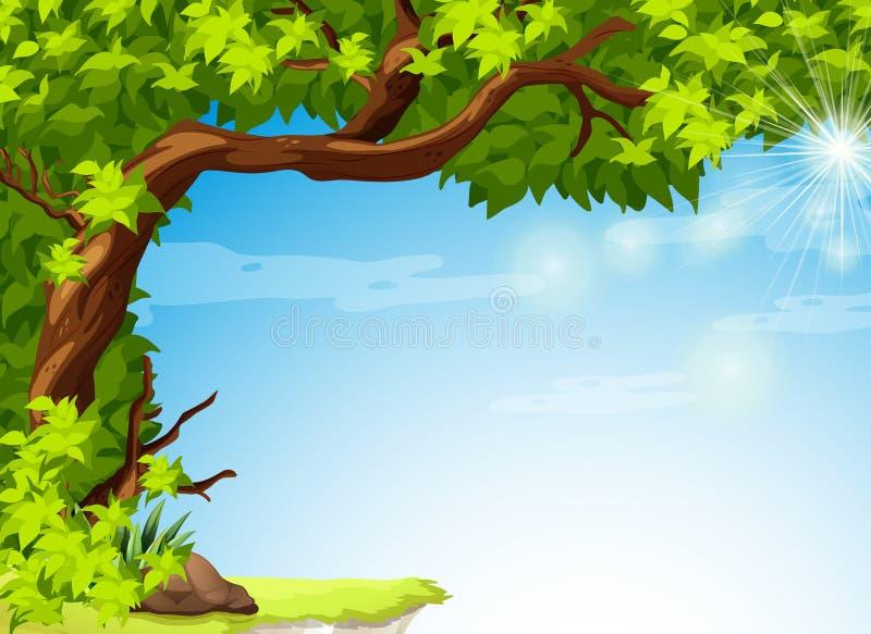Дерево с листьями зеленого цвета и ясным голубым небом иллюстрация штока