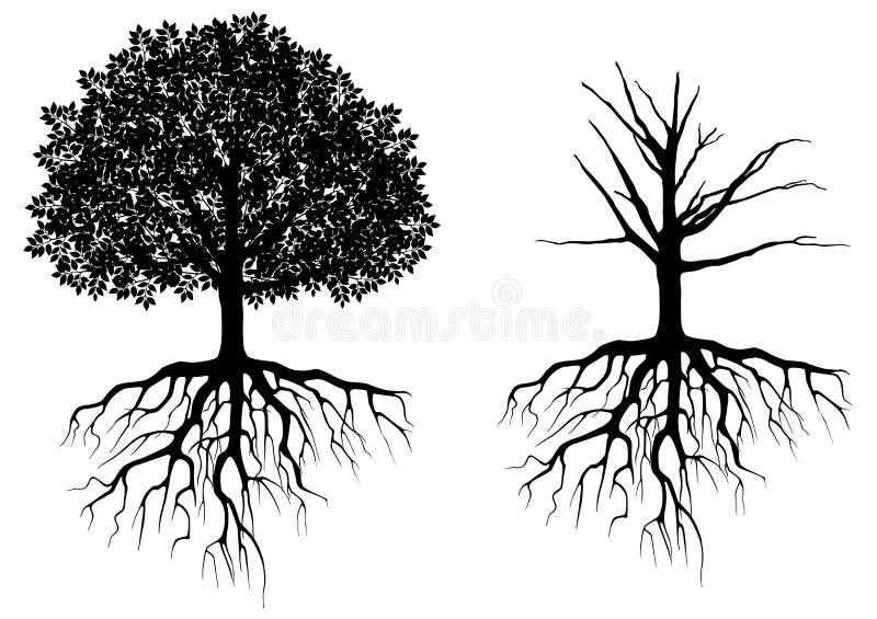 Дерево с корнями иллюстрация вектора