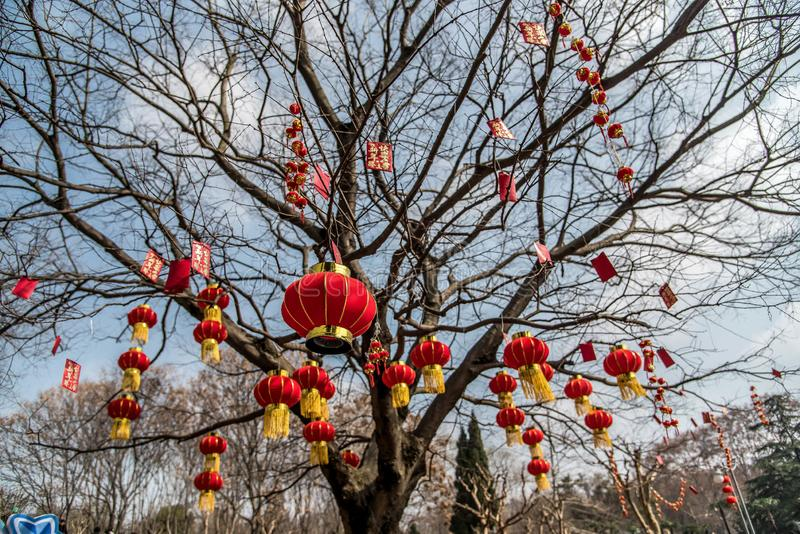 Дерево с красными фонариками и висеть конвертов стоковое изображение