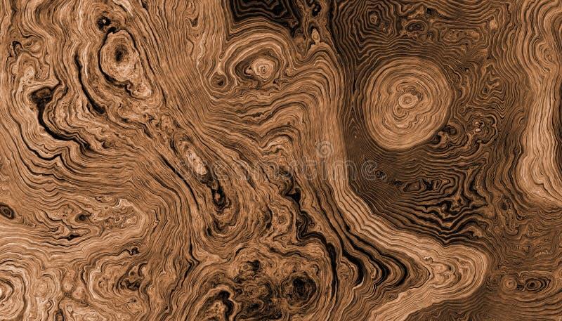 Дерево укореняет курчавую предпосылку бесплатная иллюстрация