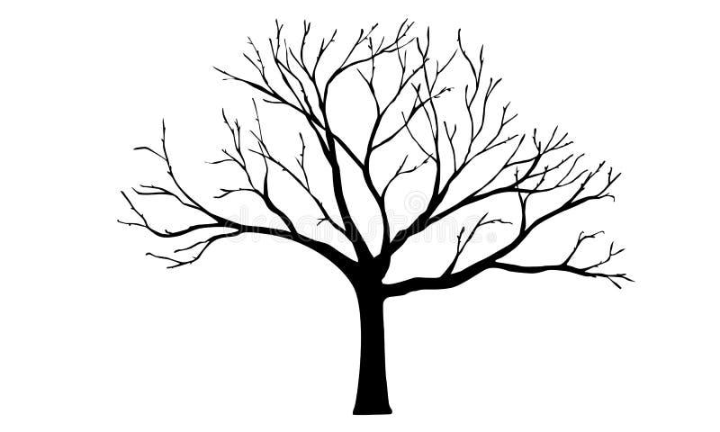 Дерево иллюстрация штока