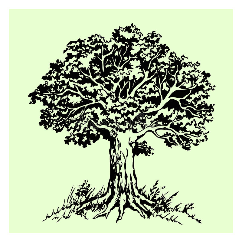 Дерево бесплатная иллюстрация