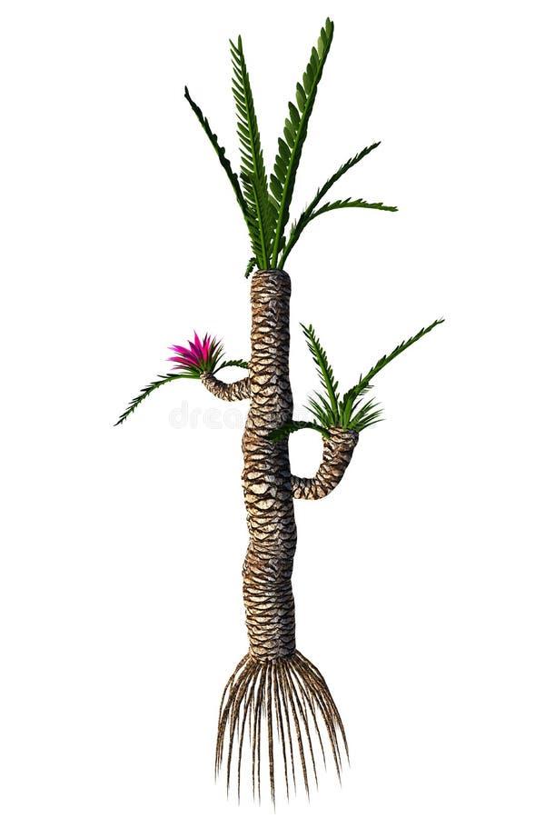 Дерево gigas Williamsonia бесплатная иллюстрация