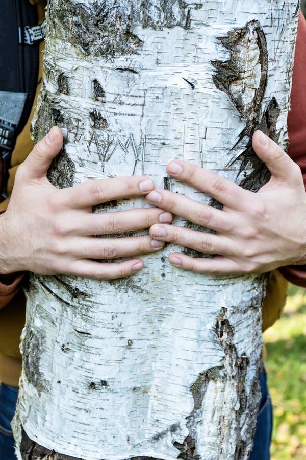 человек обнимает березу картинка камни