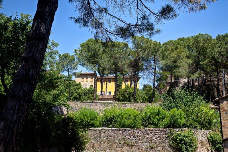 Дерево San Gimignano дома ландшафта, Тоскана, Toscana, Италия, Италия стоковая фотография
