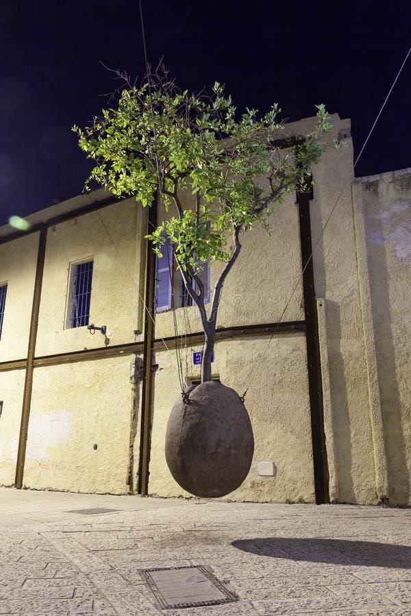 Дерево Sureal в яичке стоковые фотографии rf