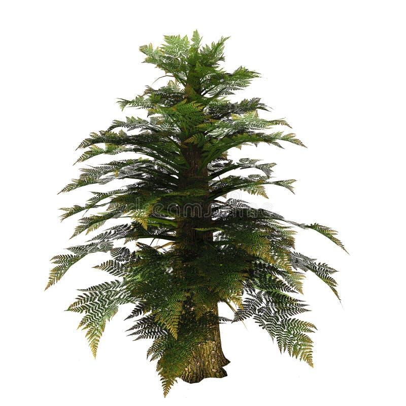 Дерево Tempskya иллюстрация штока