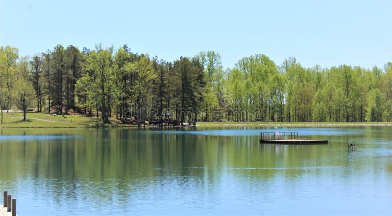 Деревья бросили глубокие отражения на озере стоковое изображение