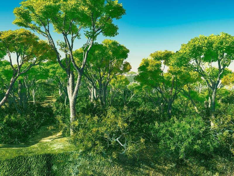 Деревья Буша в переводе Австралии 3d иллюстрация вектора