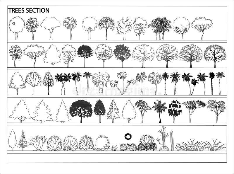 Деревья вектора бесплатная иллюстрация