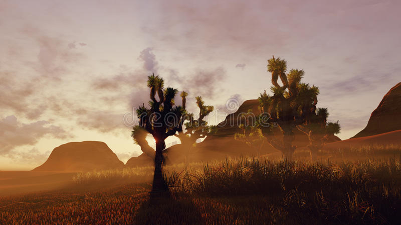 Деревья Иешуа и красные утесы на заходе солнца иллюстрация вектора
