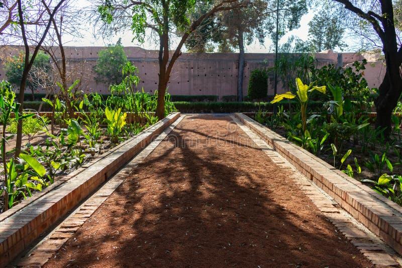 Деревья и заводы вдоль тропы на парке кибер в Marrakesh Марокко с городскими стенами в конце стоковое фото