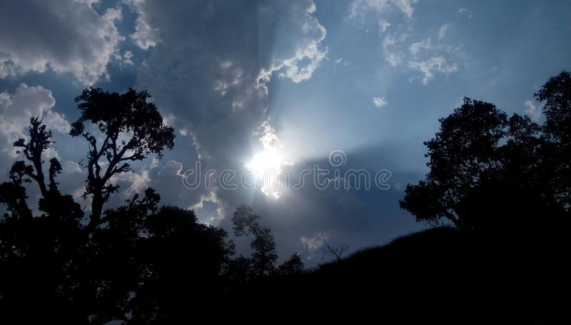 Деревья облаков Солнца стоковая фотография