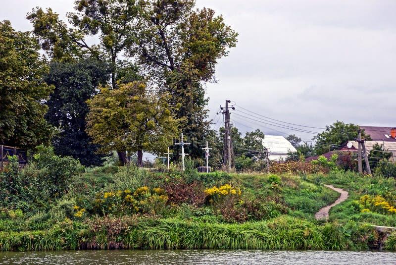 Деревья около крестов в кладбище около травы на береге резервуара стоковое фото