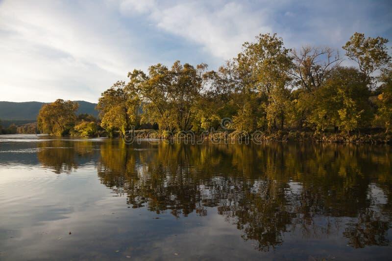 Деревья отражая в реке Shenandoah стоковое фото rf