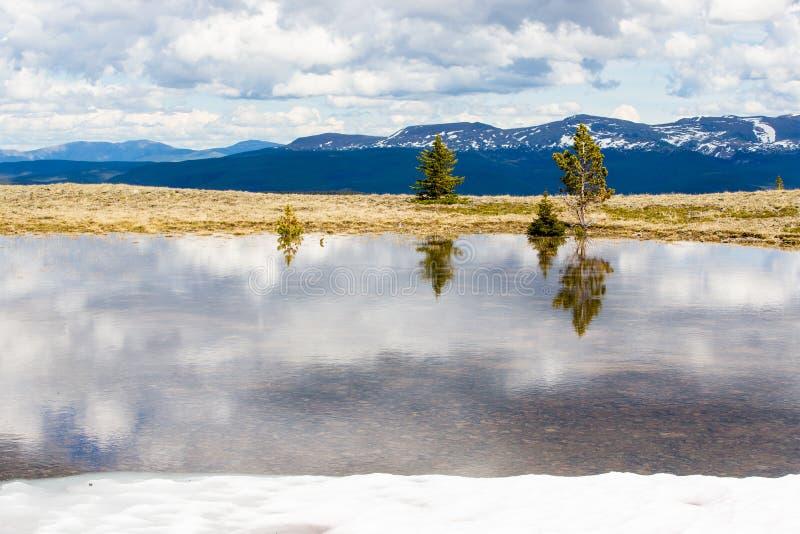 Деревья отражены в плавят воду, против снег-покрытых верхних частей высоких гор Британской Колумбии стоковая фотография rf