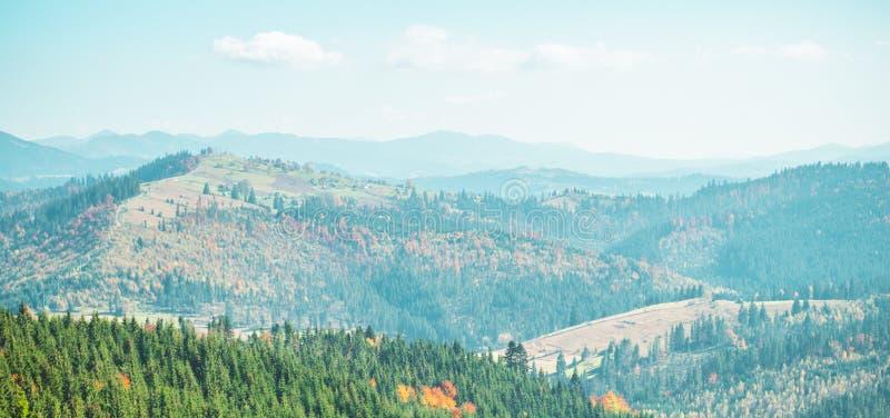 Деревья, покрытые с листьями желтых и шарлаха, на которых падения греют светлые горы Прикарпатско, Украин Сцена деревни осени стоковое изображение rf