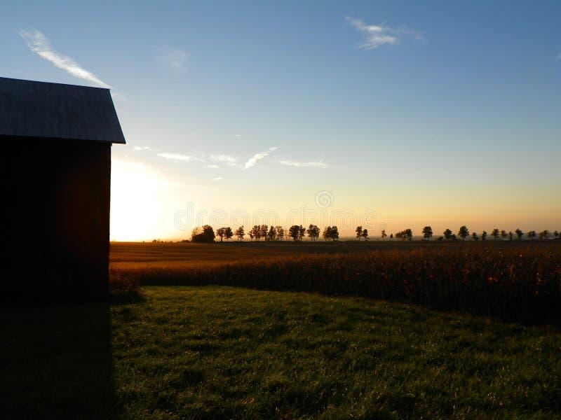 Деревья, поля и амбар silhouetted против заходящего солнца на th стоковое изображение rf