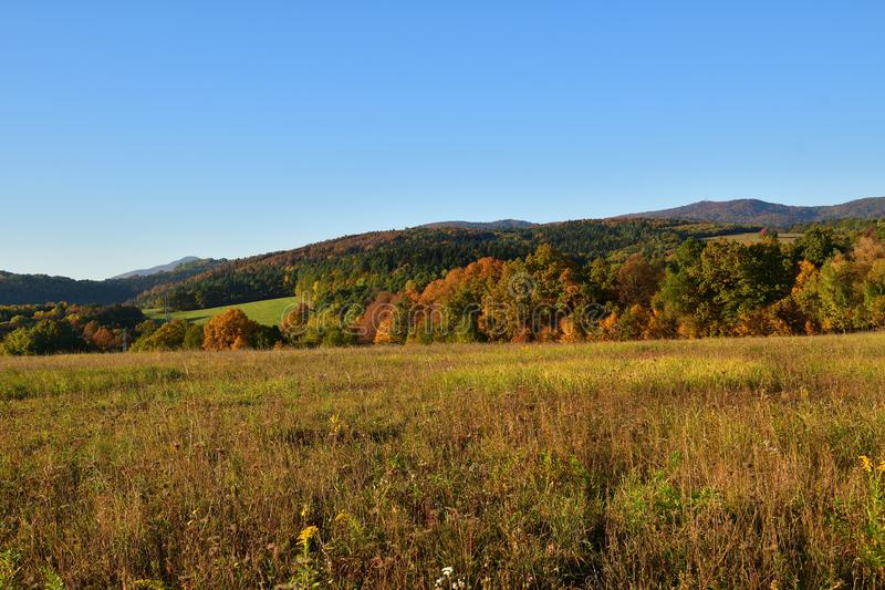 Деревья природы в осени покрашенные в ландшафтах цвета стоковая фотография rf