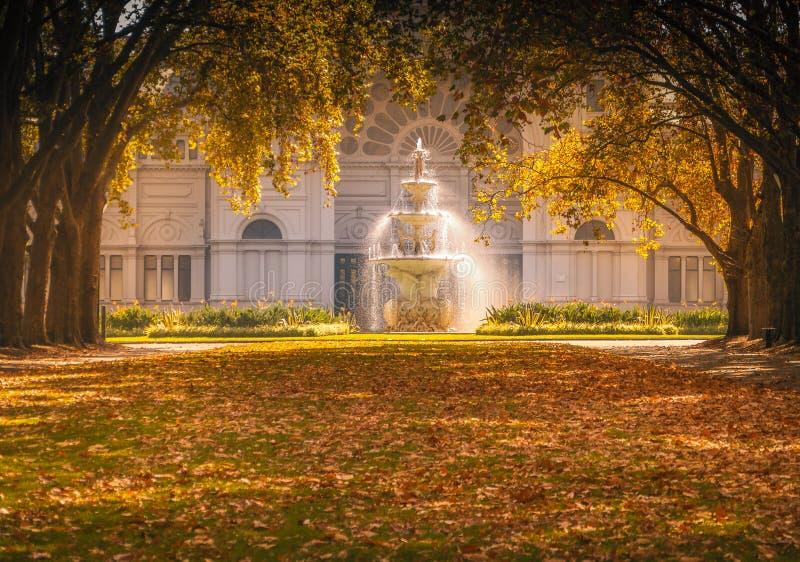 Деревья фонтана и осени в Мельбурне, Австралии стоковые фото