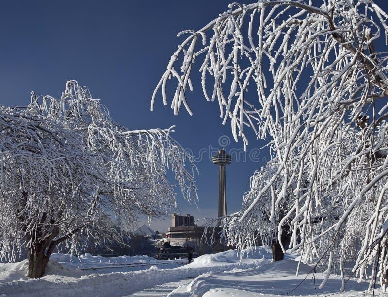 Деревья 2 льда гололеди Ниагарского Водопада стоковые фотографии rf