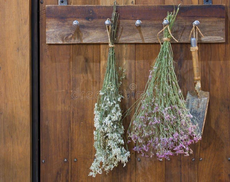 Деревянная винтажная вешалка стиля стоковые фотографии rf