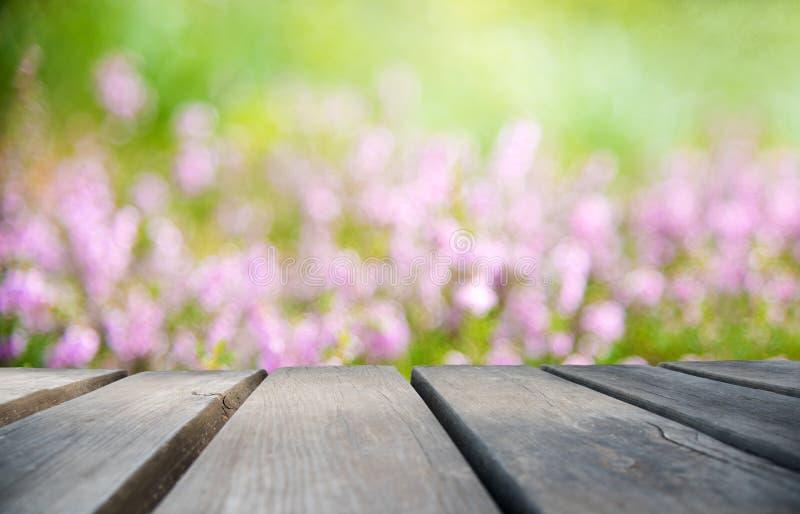 Деревянная доска с полем цветка Эрики как предпосылка стоковые изображения