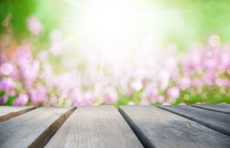 Деревянная доска с солнечным полем цветка Эрики как предпосылка стоковое фото rf