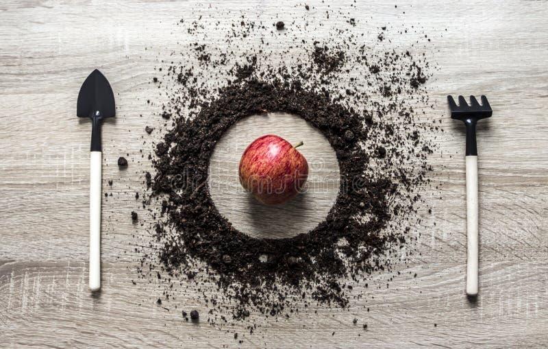 Деревянная земля концепции предпосылки сложила текстуру грабл вилки вилки ложки блюда круга засаживая разбивочную весну яблока го стоковые фотографии rf