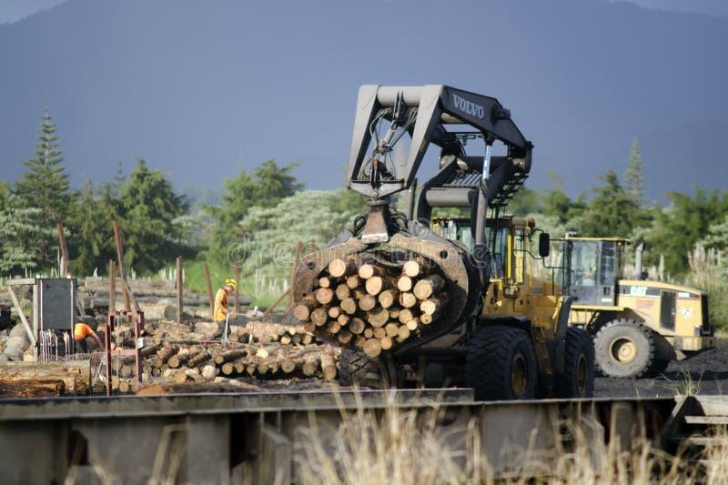 Деревянная индустрия - древесина NZ стоковые фотографии rf